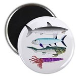 4 Extinct Sea Monsters Magnets