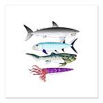 4 Extinct Sea Monsters Square Car Magnet 3