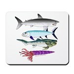 4 Extinct Sea Monsters Mousepad