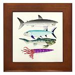 4 Extinct Sea Monsters Framed Tile