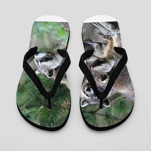 Racoon001 Flip Flops