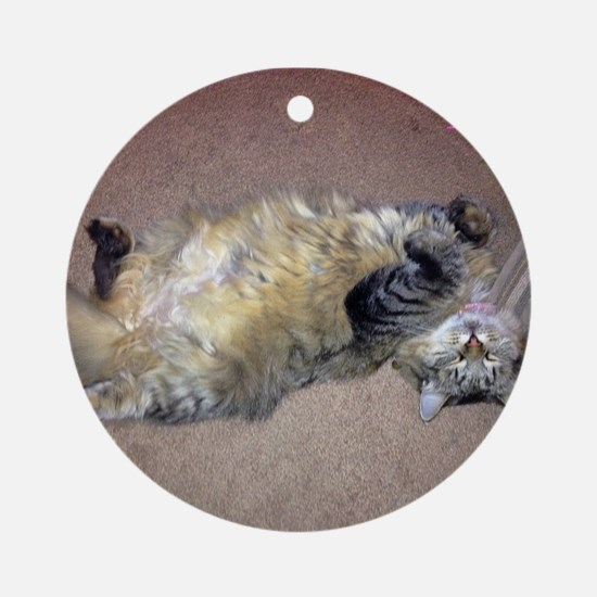 Very Happy Formerly Stray Maine Ornament (round)