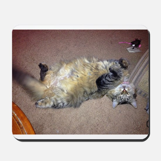 Very happy formerly stray Maine Coon Mousepad
