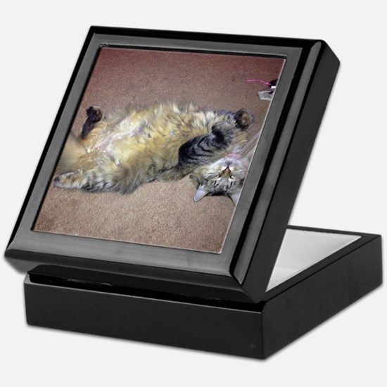 Very Happy Formerly Stray Maine Coon Keepsake Box