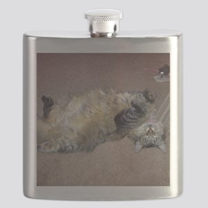 Very Happy Formerly Stray Maine Coon Flask