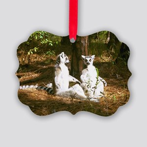'sunning Ring-Tails' Holiday Picture Ornament