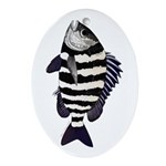 Sheepshead porgy Ornament (Oval)