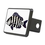 Sheepshead porgy Hitch Cover