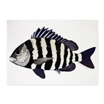 Sheepshead porgy 5'x7'Area Rug