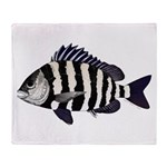 Sheepshead porgy Throw Blanket