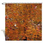 Colorful Fall Leaves Autumn Tree Shower Curtain