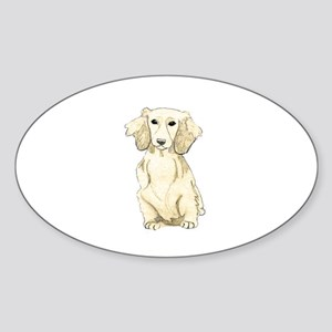 Longhaired English Cream Miniature Dachshu Sticker