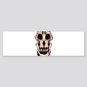 Women Skull Illusion Sticker (Bumper)