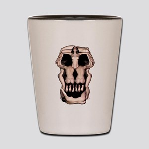 Women Skull Illusion Shot Glass