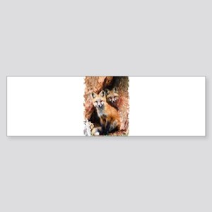 Fox cubs in Hollow Forest Tree Bumper Sticker