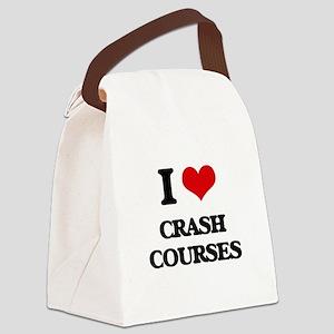 I love Crash Courses Canvas Lunch Bag