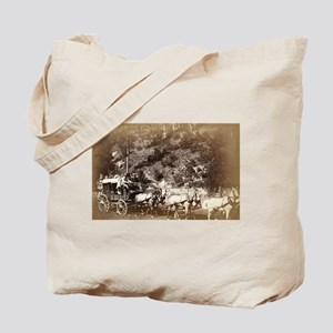 Black Hills treasure coach - John Grabill - 1887 T