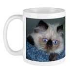 Coffee with the Giz!