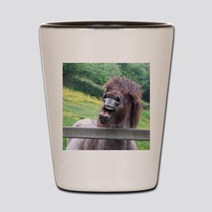 Tired of Waiting Shot Glass