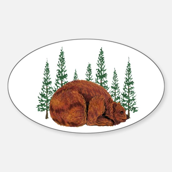 BEAR TIME Decal