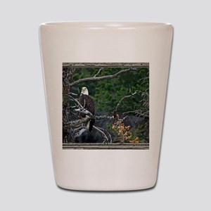Old Cabin Window Bald Eagle Shot Glass