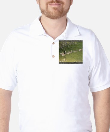 Old window canadian geese Golf Shirt