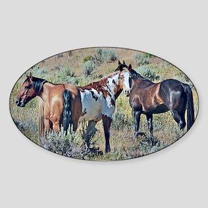 Old window horses 3 Sticker (Oval)