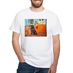 Room & Newfoundland White T-Shirt