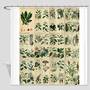 Illustrated Flora Shower Curtain