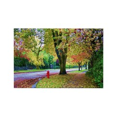 Autumn in Vancouver Rectangle Magnet
