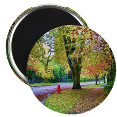 Autumn in Vancouver Magnet