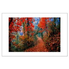 Autumn Flames Trail Posters