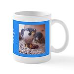 2014 Falcon Family Mugs