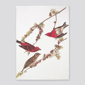 Audubon Purple Finch 5'x7'area Rug