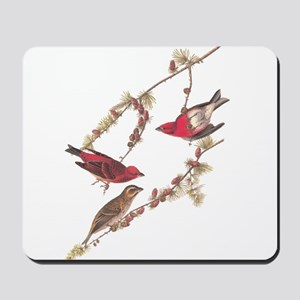 Audubon Purple Finch Mousepad