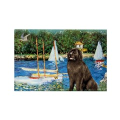 Sailboats & Newfoundland Rectangle Magnet (10 pack