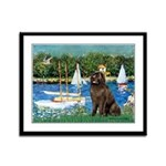 Sailboats & Newfoundland Framed Panel Print