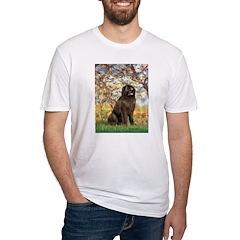 Spring / Newfoundland Shirt