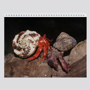 Pp And Strawberry Hermit Crabs Wall Calendar