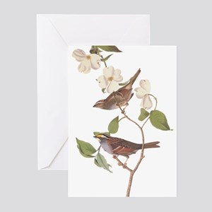 Audubon White Throated Sparrow Original Greeting C