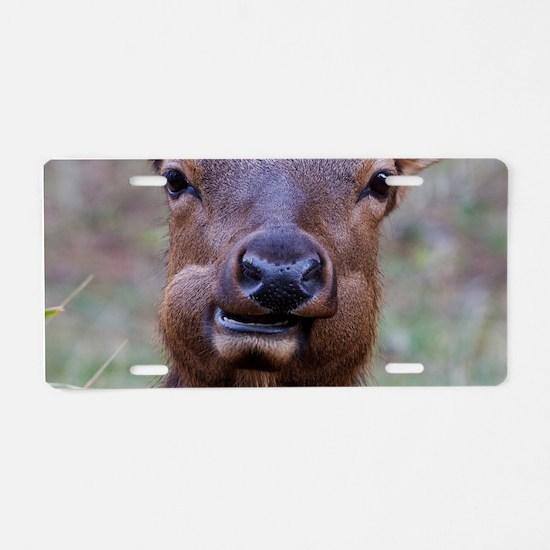 Funny Elk Aluminum License Plate