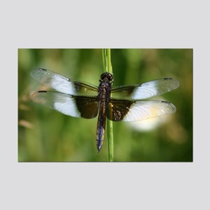 Dragonfly Mini Poster Print