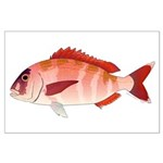 Red Porgy Posters