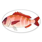 Red Porgy Sticker