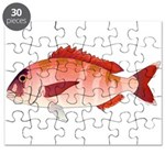 Red Porgy Puzzle