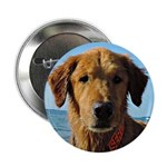"Tuesday & Loyalty - 2.25"" Button (10 Pack"