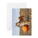Hiro Pumpkin Greeting Cards