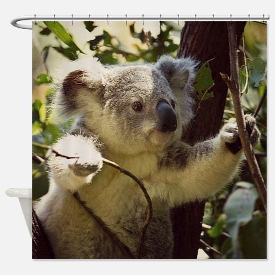 Sweet Baby Koala Shower Curtain