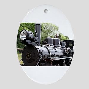Steam train, Wales, United Kingdom Ornament (Oval)