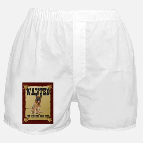 Wanted Poster Belgian Tervure Boxer Shorts